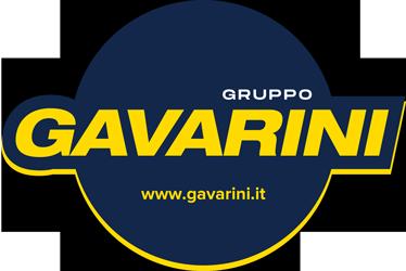 Gavarini srl logo